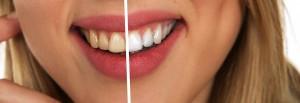 third avenue dental